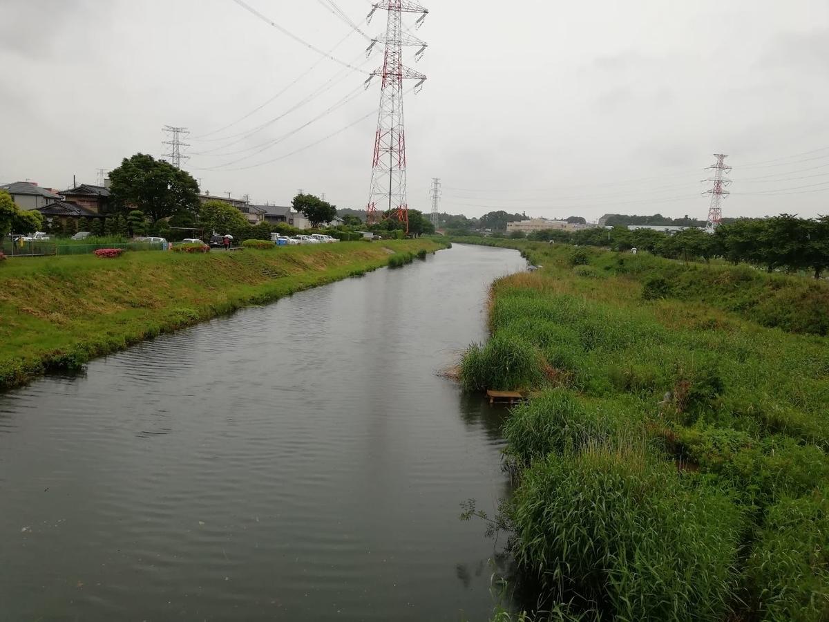f:id:seiko_udoku:20210529085625j:plain