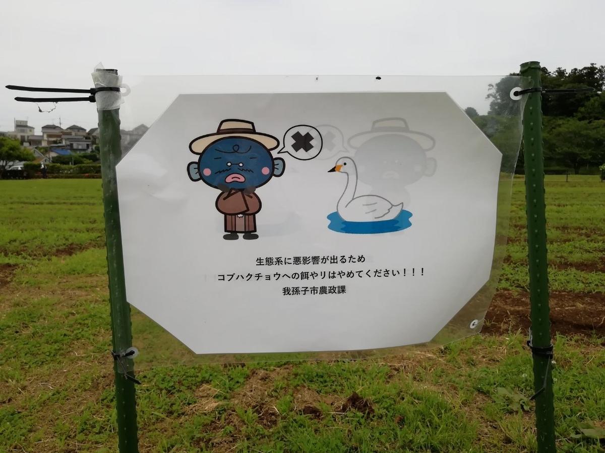 f:id:seiko_udoku:20210529142500j:plain
