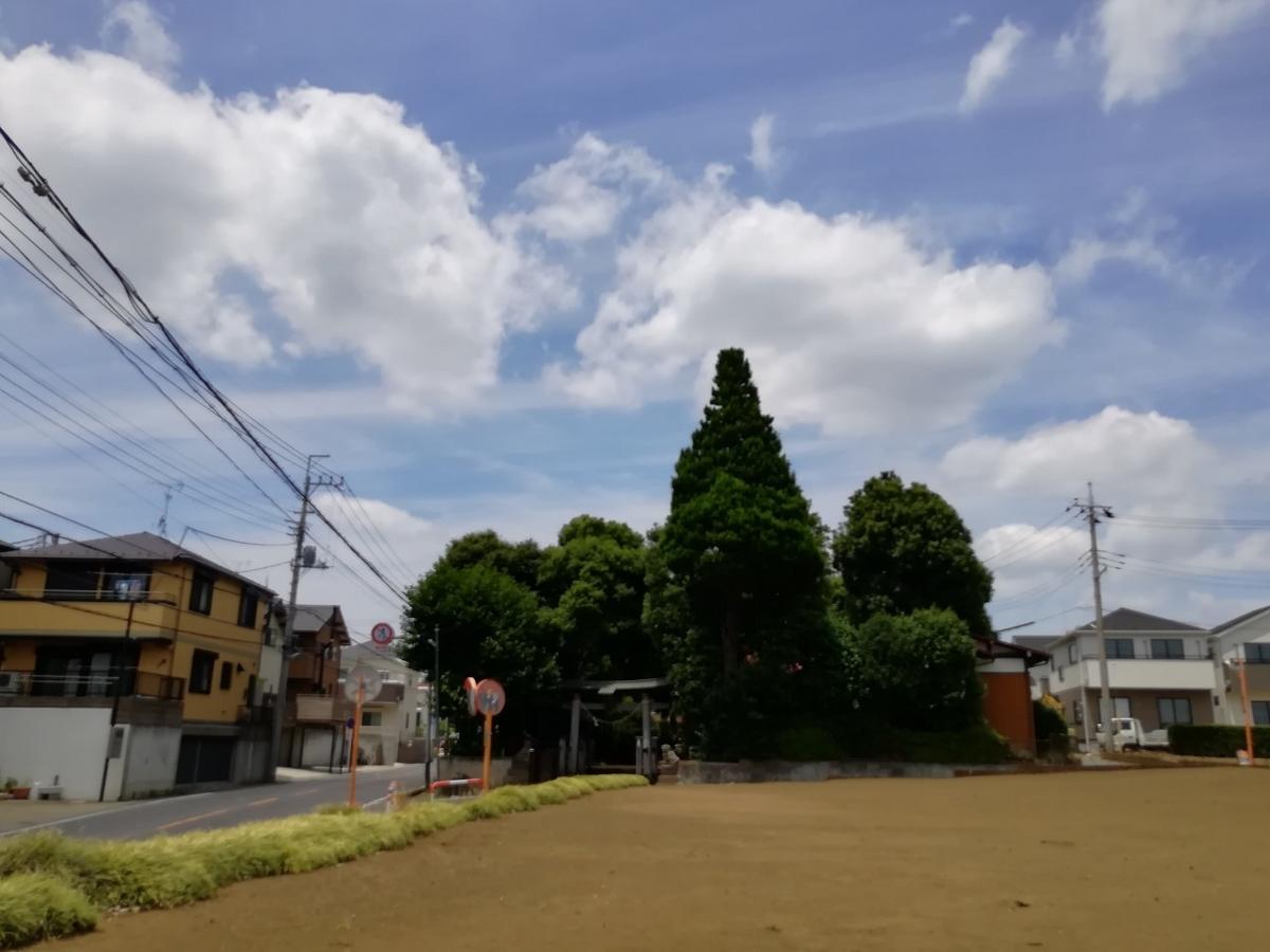 f:id:seiko_udoku:20210619094729j:plain