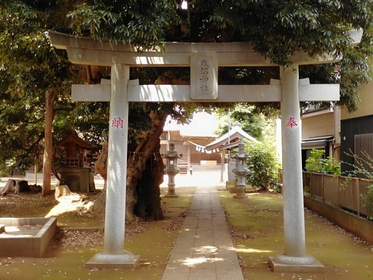 f:id:seiko_udoku:20210619200438j:plain