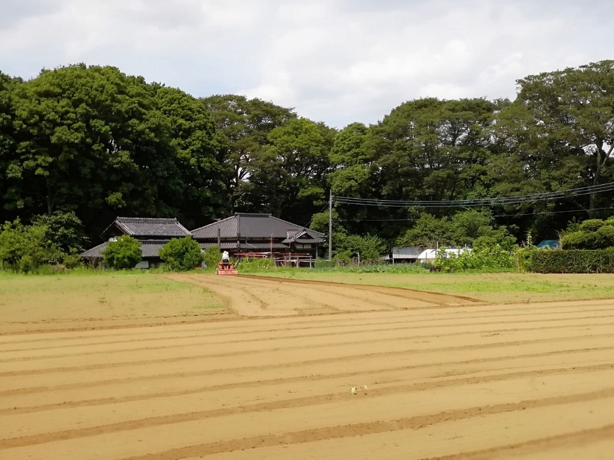 f:id:seiko_udoku:20210619221148j:plain