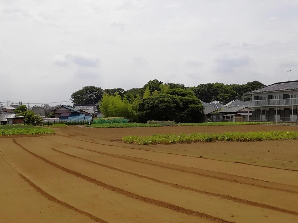 f:id:seiko_udoku:20210619221555j:plain