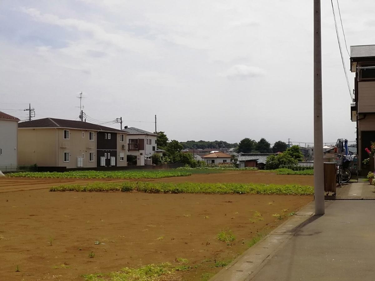 f:id:seiko_udoku:20210619221639j:plain