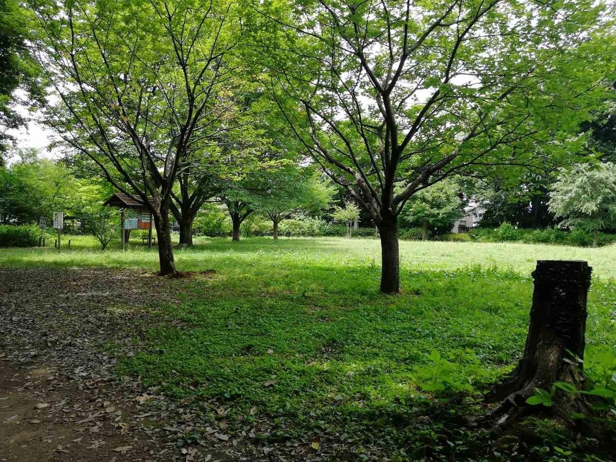 f:id:seiko_udoku:20210629170931j:plain