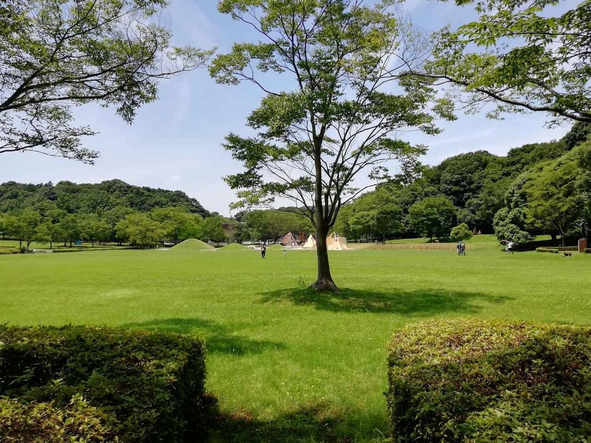 f:id:seiko_udoku:20210712203635j:plain