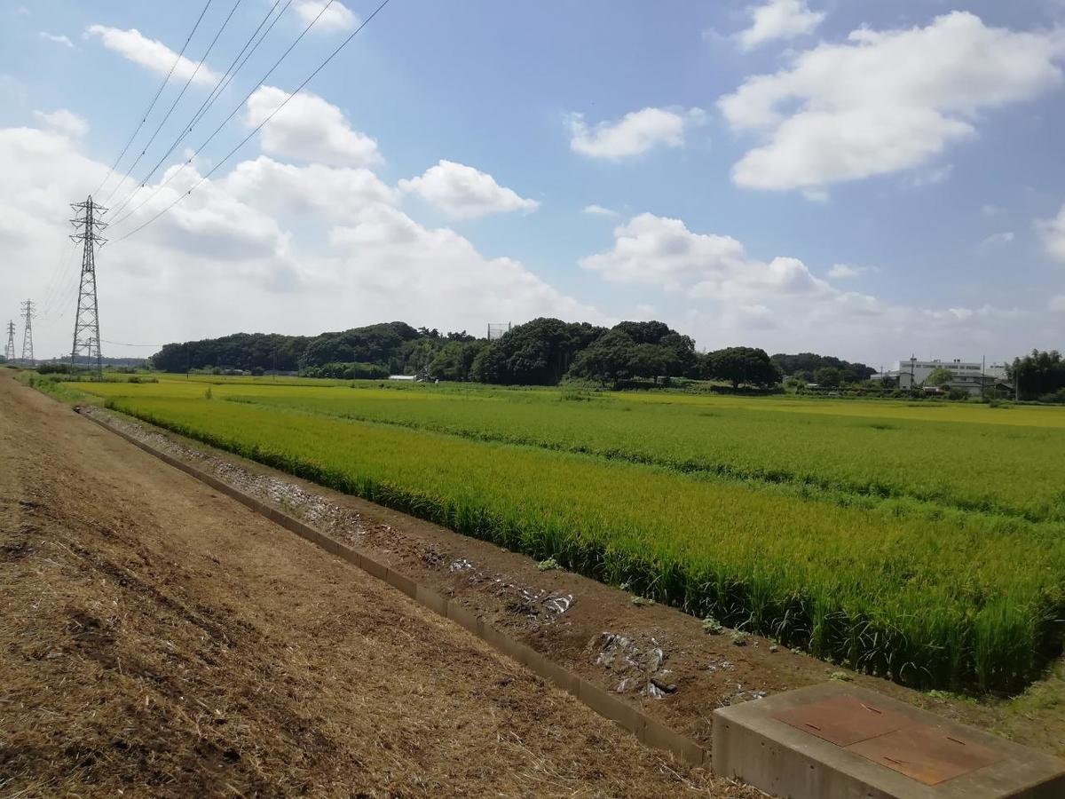 f:id:seiko_udoku:20210827210038j:plain