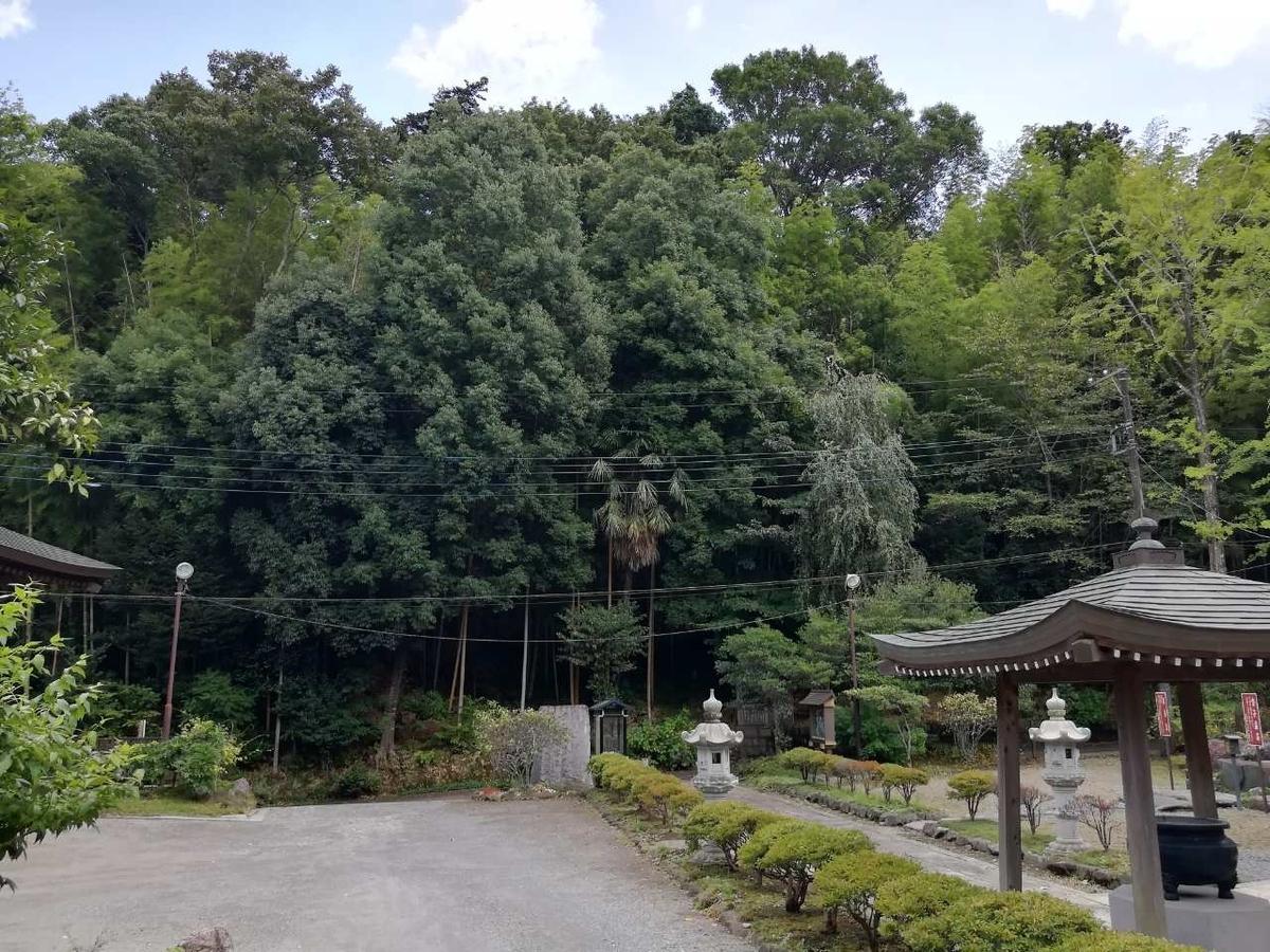 f:id:seiko_udoku:20210904131248j:plain