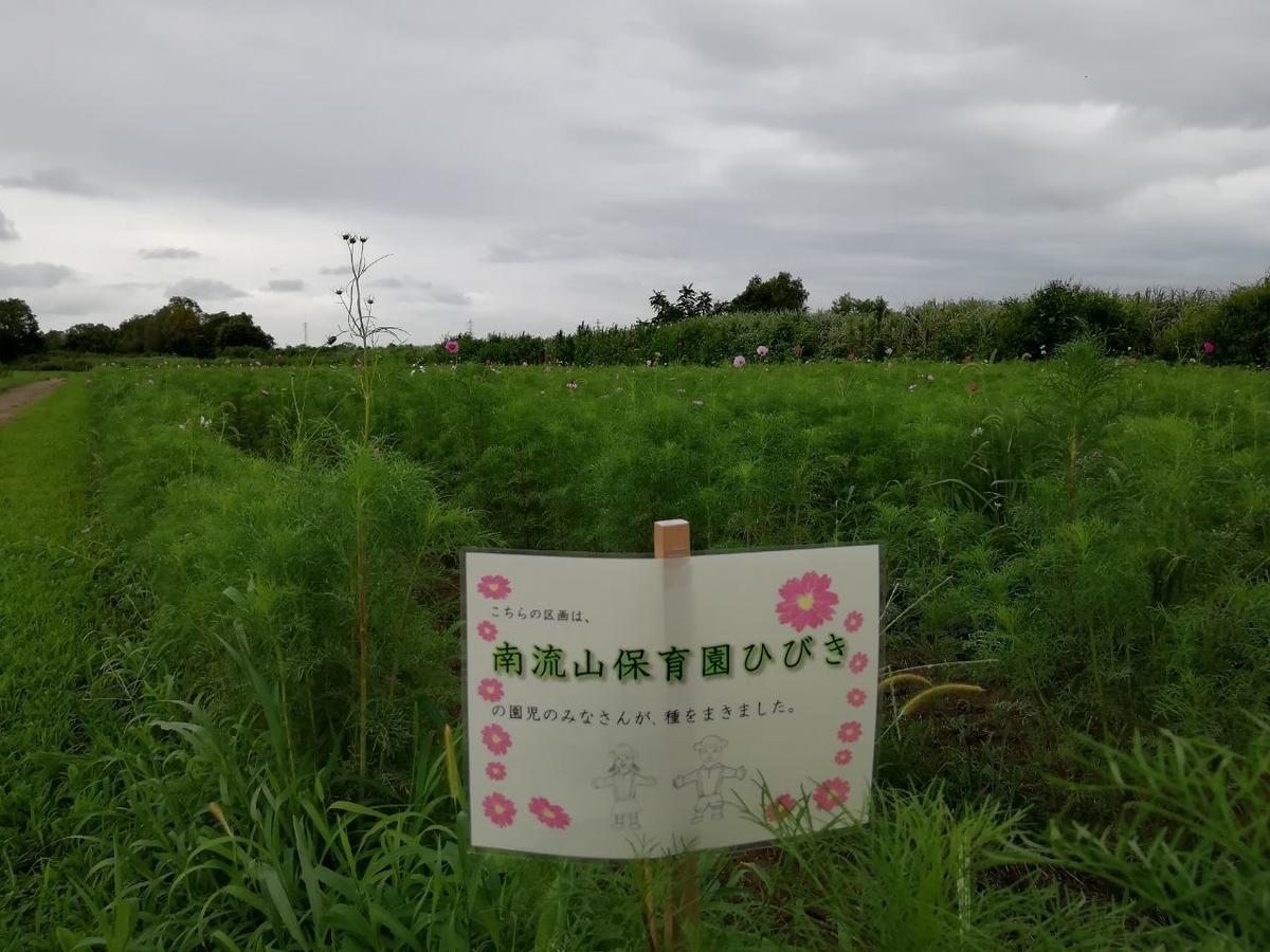 f:id:seiko_udoku:20210907154912j:plain