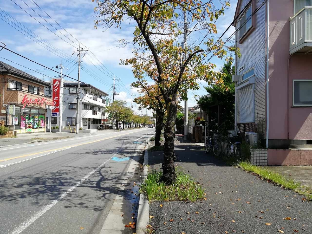 f:id:seiko_udoku:20210911212435j:plain
