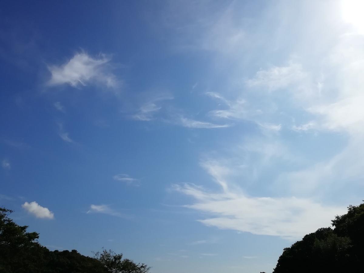 f:id:seiko_udoku:20210915114727j:plain