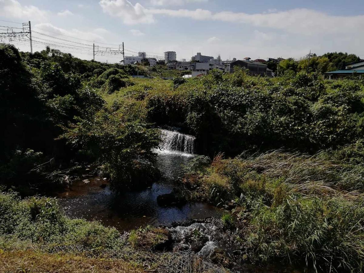 f:id:seiko_udoku:20211016072130j:plain
