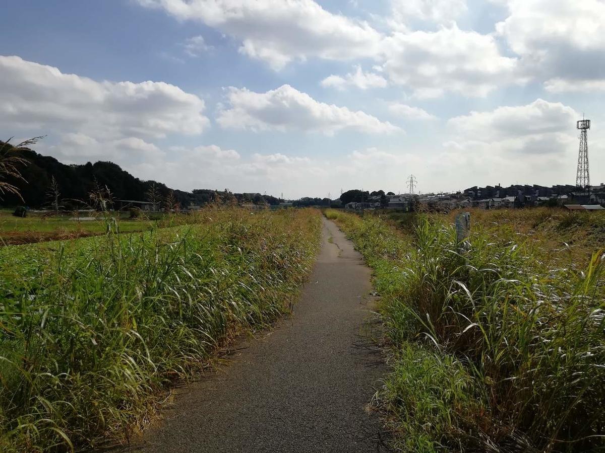 f:id:seiko_udoku:20211016091122j:plain