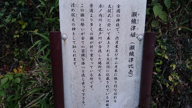 f:id:seimei-no-hana:20181115165732j:plain