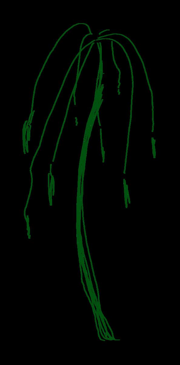 f:id:seimeikatsudou:20210417174830p:plain