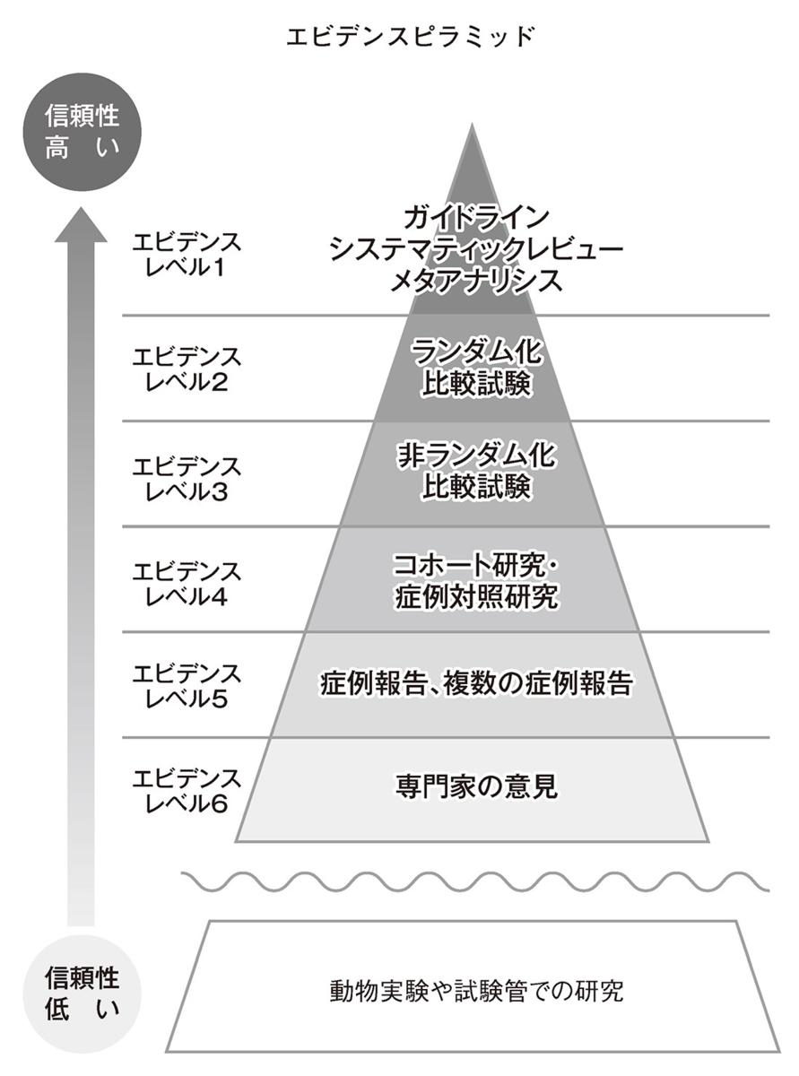 f:id:seishun_shimada:20210219130225p:plain