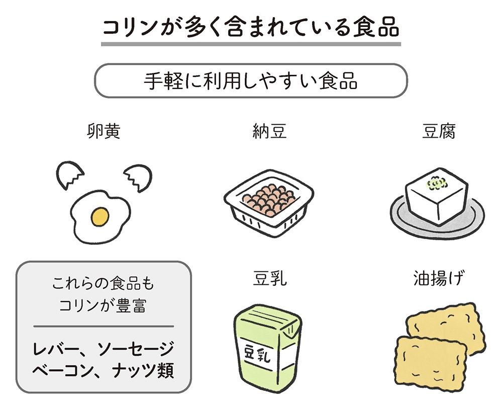 コリンが多く含まれている食品