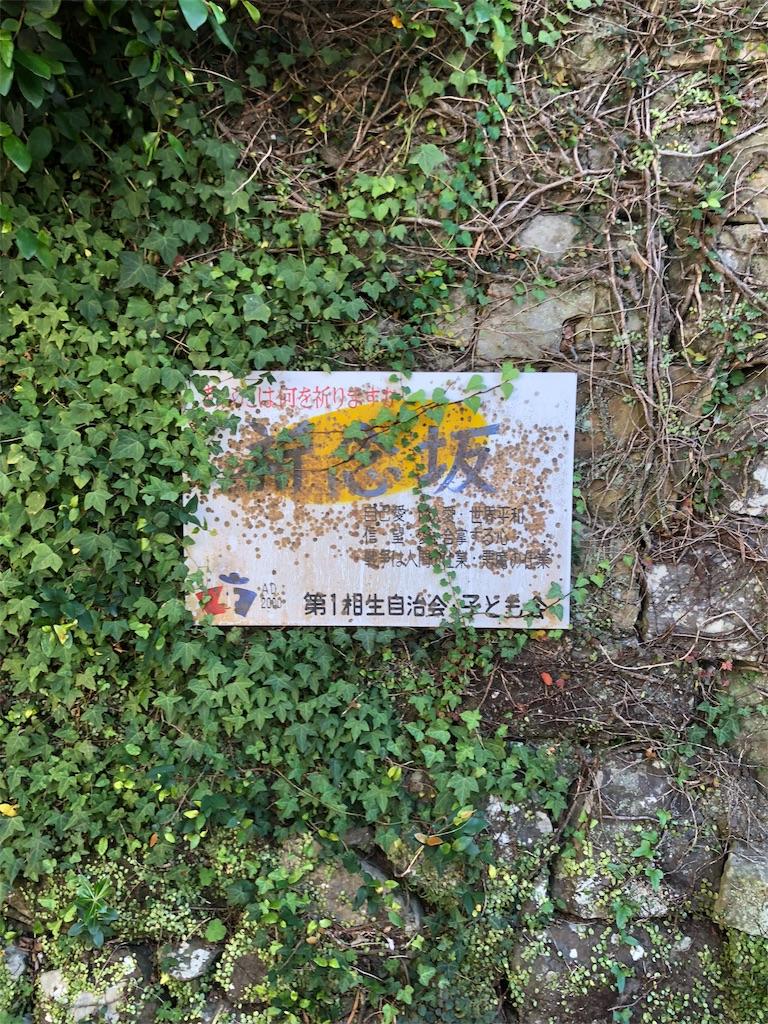 f:id:seisyun18gogogo:20181020150432j:image