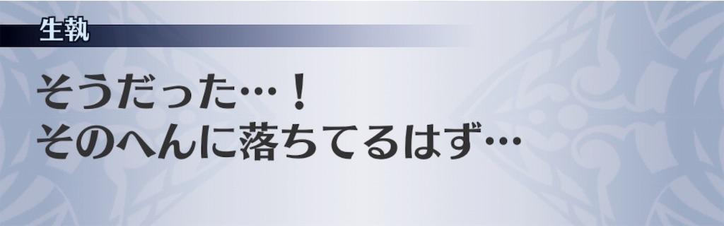 f:id:seisyuu:20181226060223j:plain