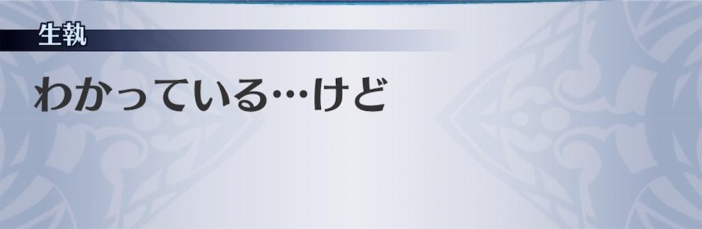 f:id:seisyuu:20181231223443j:plain