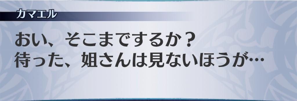 f:id:seisyuu:20190111195814j:plain