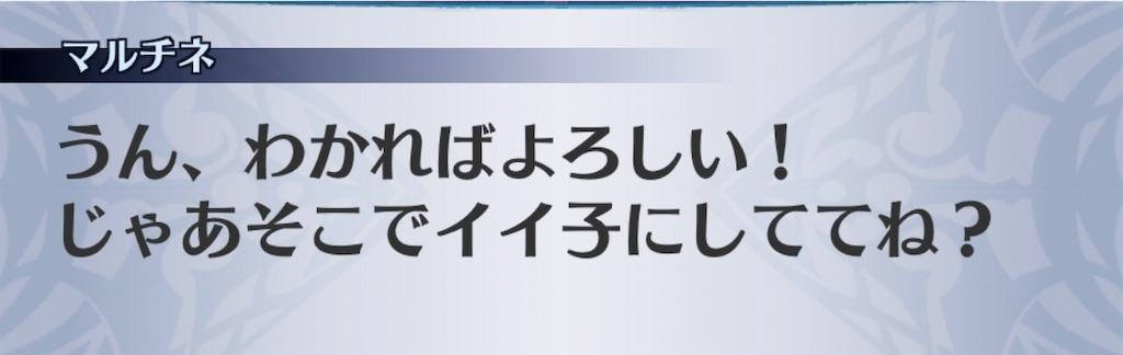 f:id:seisyuu:20190604165934j:plain