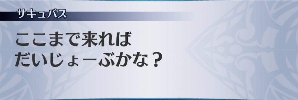 f:id:seisyuu:20190616220639j:plain