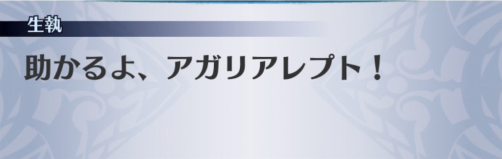 f:id:seisyuu:20190727164445j:plain