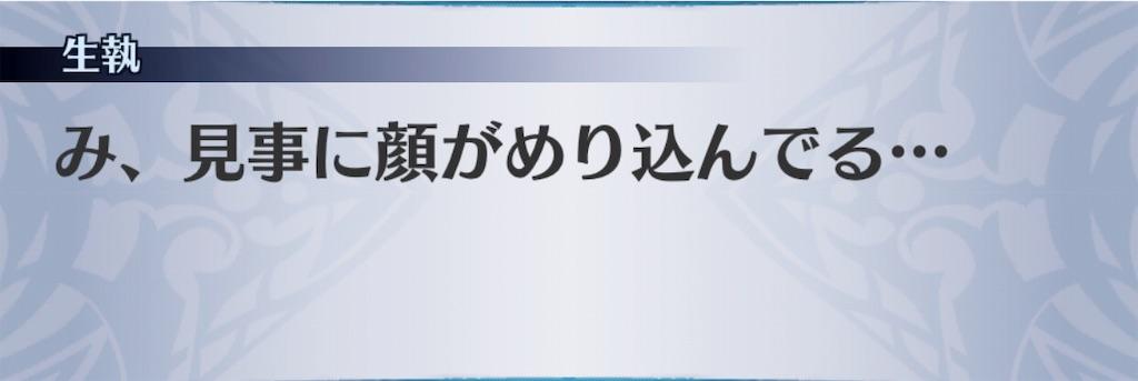 f:id:seisyuu:20191025172930j:plain