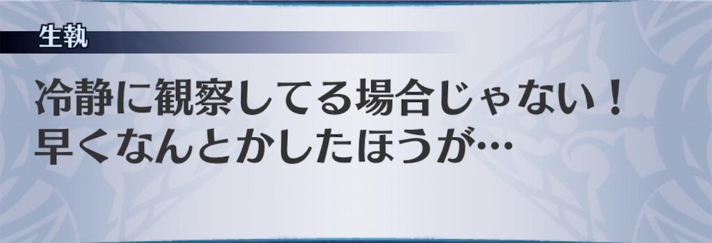 f:id:seisyuu:20200313133337j:plain