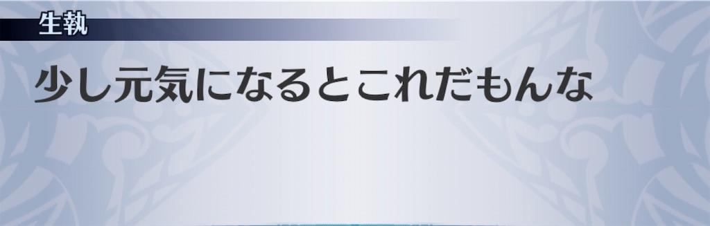 f:id:seisyuu:20200316184940j:plain