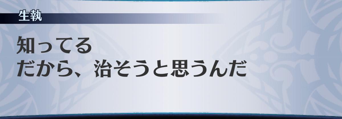 f:id:seisyuu:20210122173801j:plain