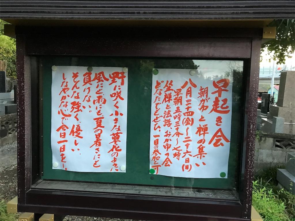 f:id:seitaisi_kenken:20180825052452j:image