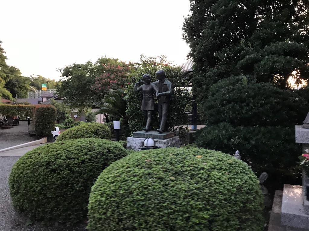 f:id:seitaisi_kenken:20180825052552j:image