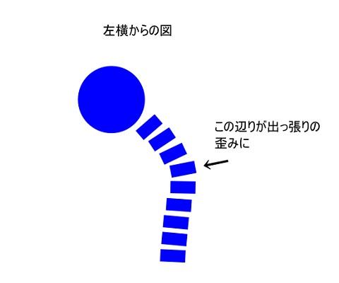 f:id:seitaiugm:20200513105837j:plain