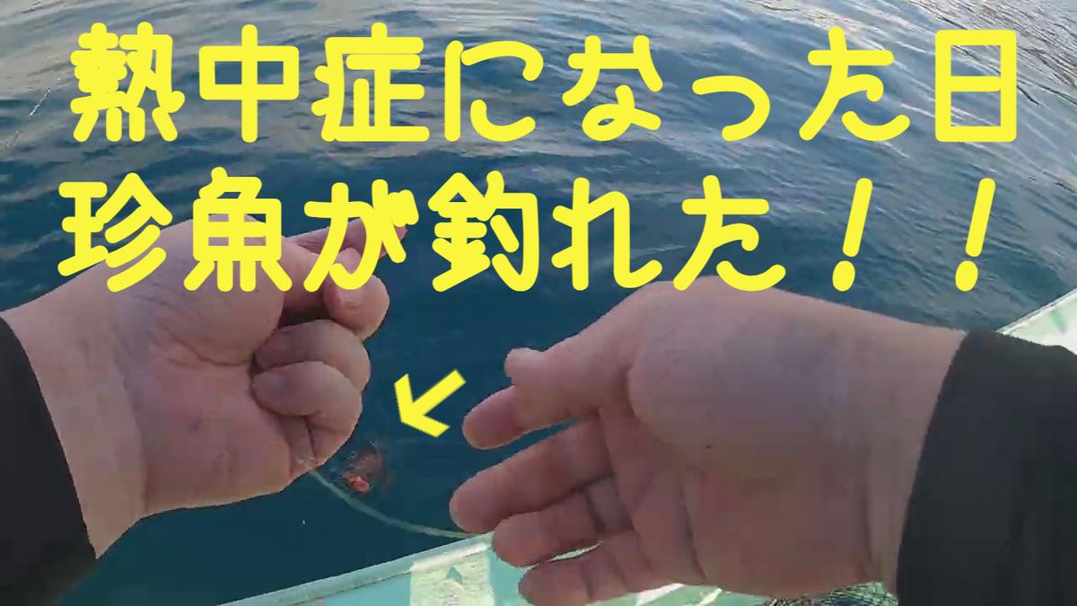 f:id:seiun_k:20211021164629j:plain