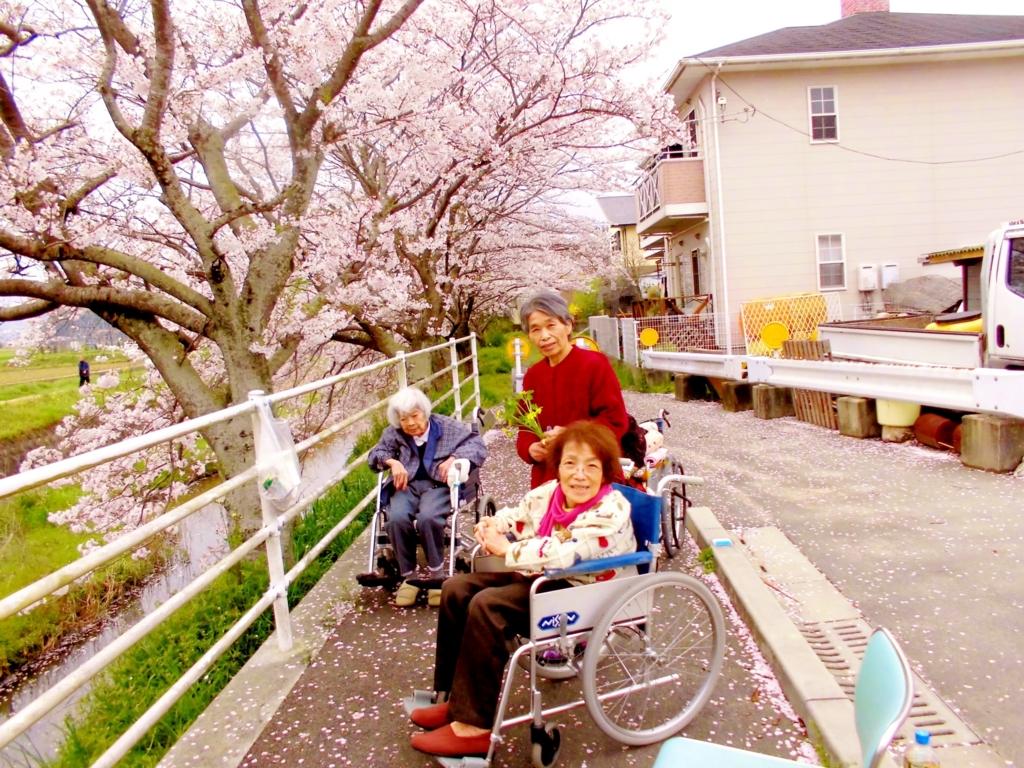 f:id:seiwa-kai:20170409142749j:plain