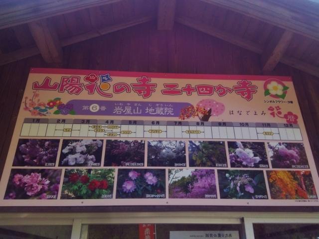 f:id:seiwa_yamaguchi:20170419195623j:plain