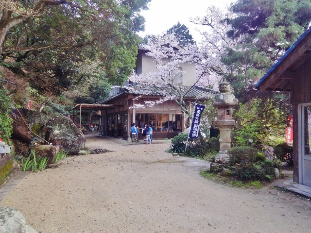 f:id:seiwa_yamaguchi:20170419212211j:plain