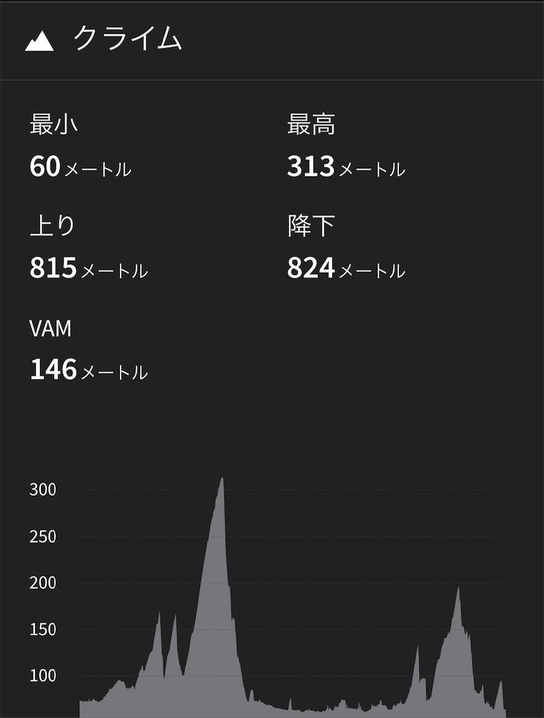 f:id:seizon-nikki:20201026010008j:image