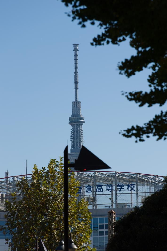 f:id:sekaibunka:20121118103032j:image