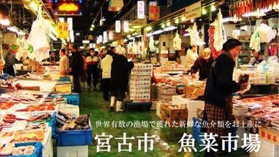 2016年目黒のさんま祭りの日程!目黒のさんま祭りVS目黒のSUN祭りって?