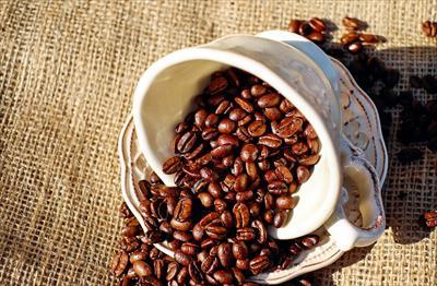 トルコの人ならみんな知ってる!?コーヒー占いとは!?