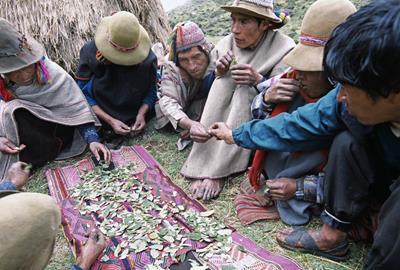 南米ペルーの占い!ペルーではタロット占いとコカの葉占いが人気だった!?