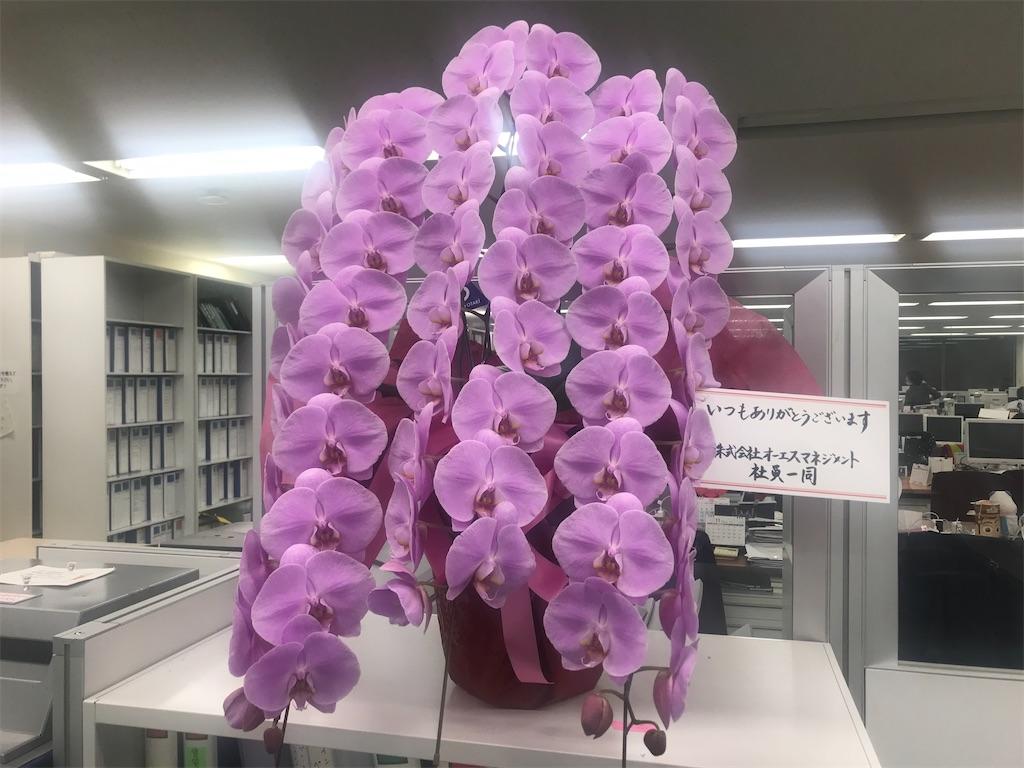 f:id:sekaiwa-hiroshi:20201022212820j:image