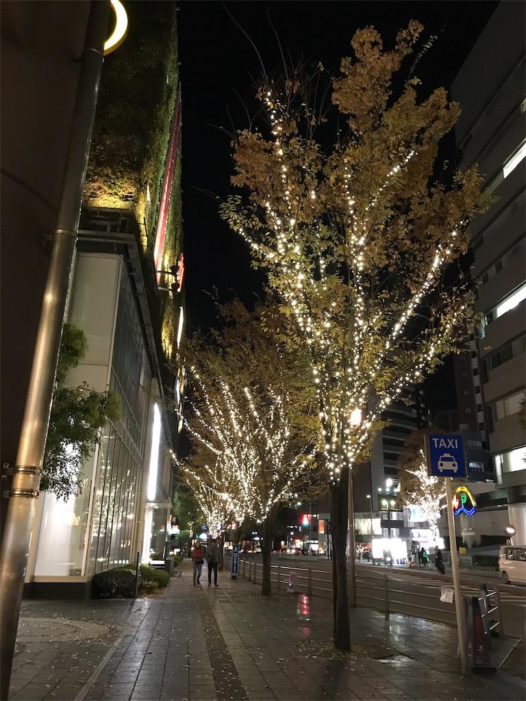 f:id:sekidome_syrup:20181120135954j:image