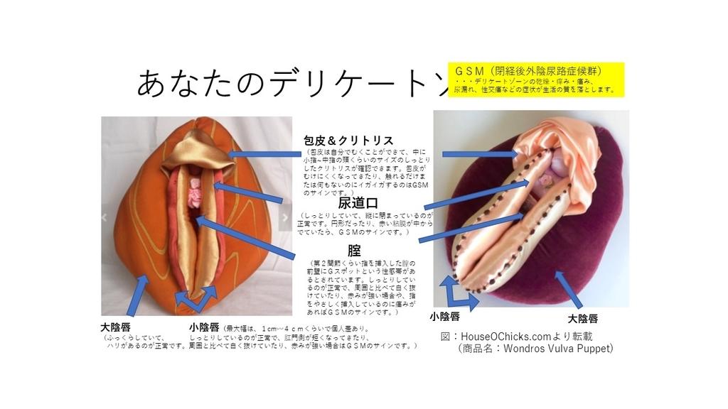 f:id:sekiguchiyuki:20180915122854j:plain