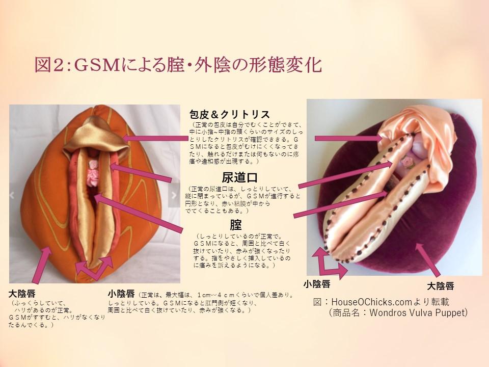 f:id:sekiguchiyuki:20190203191941j:plain