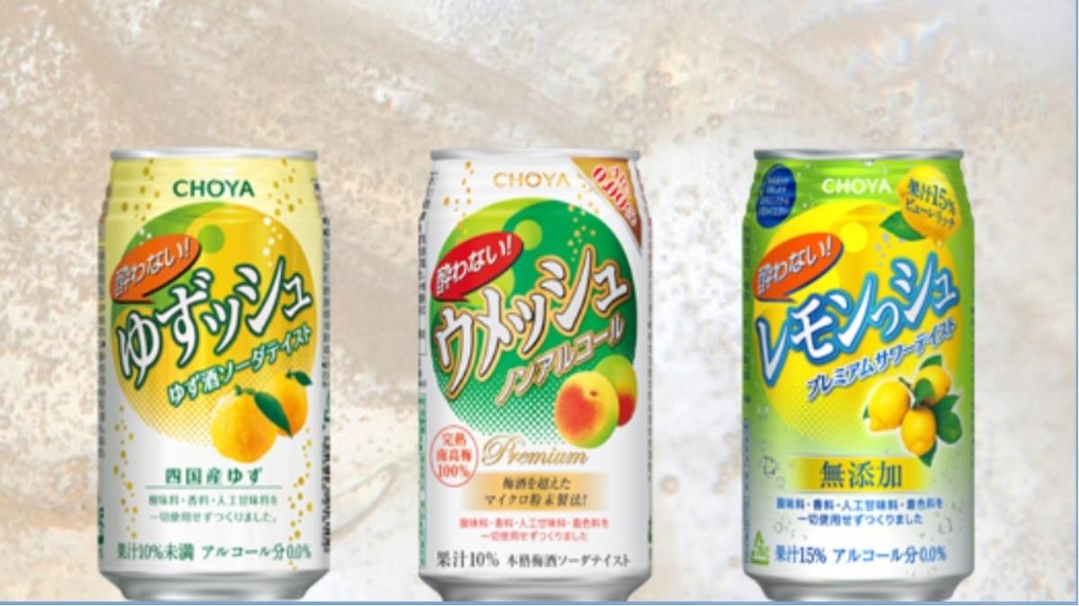 f:id:sekiguchiyuki:20201105101559j:plain