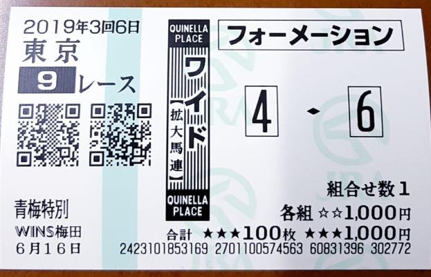 f:id:sekiwakedesu:20190616145437j:plain