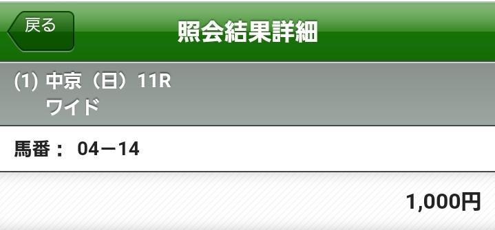 f:id:sekiwakedesu:20190707143902j:plain